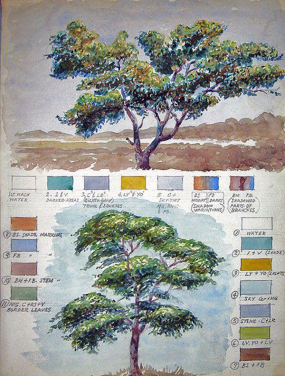 Vintage Watercolor Study