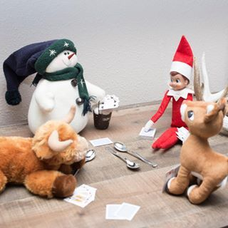 When the elf starts a game of spoons, we all join in for a family game night. ⠀ ⠀ #elfontheshelf ⠀  #christmas #elf #merrychristmas #tistheseason #christmasspirit #holidayfun #christmasfun  #cardgame #cardgames #familygamenight #spoons #gameofspoons  #gamenight #pigskinsandpigtails