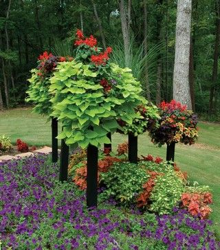 Group Basket Planters transitional-gardening-tools