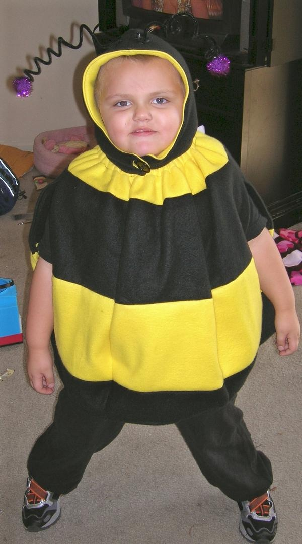 Little Bee costume I made in 2007
