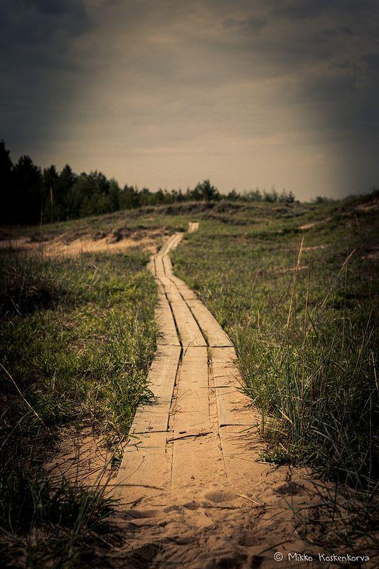 Pathway in Hailuoto, Finland
