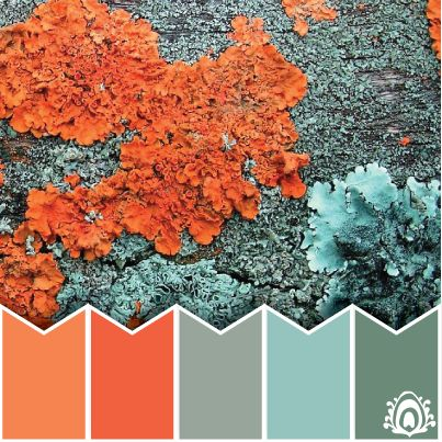 fractal moss - color palette. blue, grey, coral