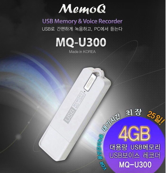 Details about ESONIC Voice Recorder 4GB USB Memory Stick