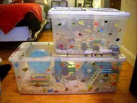 homemade hamster cage ideas car interior design