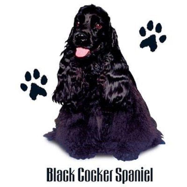 Black Cocker Spaniel Dog HEAT PRESS TRANSFER PRINT for T Shirt Sweatshirt #829c #AB