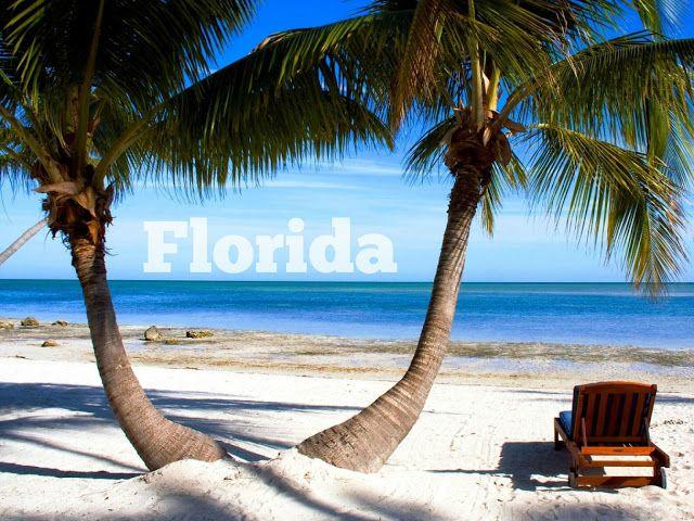 Pienimaailmanvalloittaja: Joulukuussa Floridaan !?