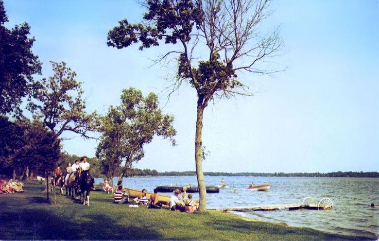 images  minnesota postcards  pinterest lakes minnesota  gull