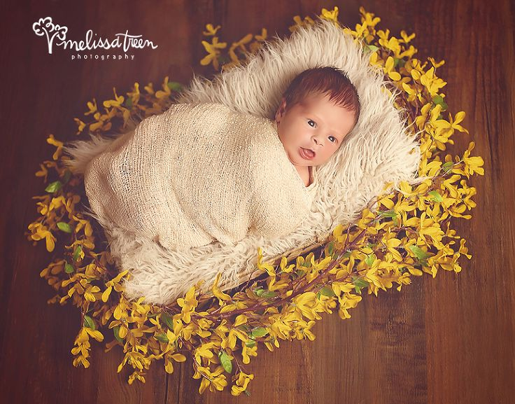 baby-girl-bed-yellow-flowers-basket-photo-posing-newborn-picture