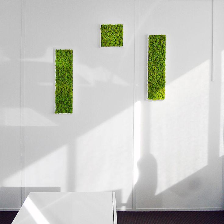 agencement v g tal v g taux stabilis s mur v g tal tableau v g tal mousse stabilis e. Black Bedroom Furniture Sets. Home Design Ideas