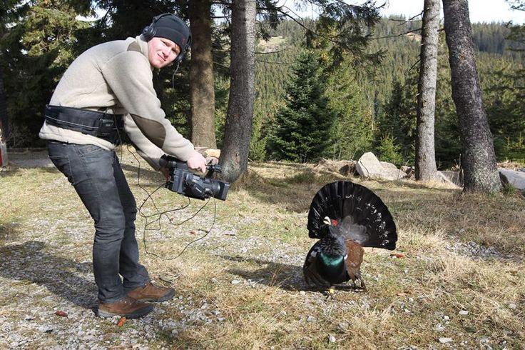 Home - Andreas Kieling - Tierfilmer und Abenteurer