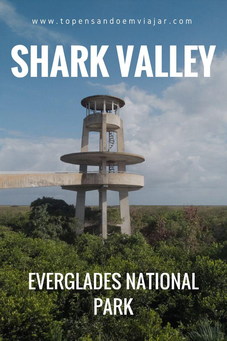 Conheça o Shark Valley, uma das entradas do Everglades National Park, um dos mais importantes parques nacionais da Flórida, nos Estados Unidos. Uma trilha de bicicleta atravessando o Everglades te leva a um mirante alucinante. Ótima opção pra conhecer o Everglades perto de Miami!