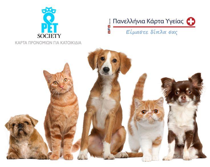Η Πανελλήνια Κάρτα Υγείας ακόμα μια φορά δίπλα σας, παρέχει στα κατοικίδιά σας τη φροντίδα που τους αξίζει! Η κάρτα Pet Society σας προσφέρει δωρεάν παροχές αλλά και εκπτώσεις έως 50% σε υπηρεσίες, φάρμακα και πολλά ακόμα! Δείτε πως μπορείτε να προσφέρετε περισσότερα στους μικρούς σας φίλους εδώ >> http://pankarta.gr/paketa/pet-society #pankarta #pet #petsociety