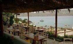 Kikis Tavern, Mykonos - Restaurant Reviews - TripAdvisor