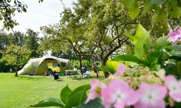 Camping | Camping de Boshoek