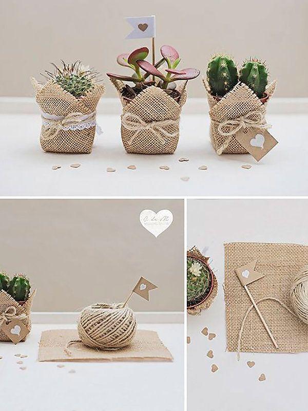 M s de 25 ideas fant sticas sobre plantas de cactus en for Manualidades caseras para regalar