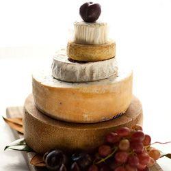 Cheese Cake Shop Tasmania
