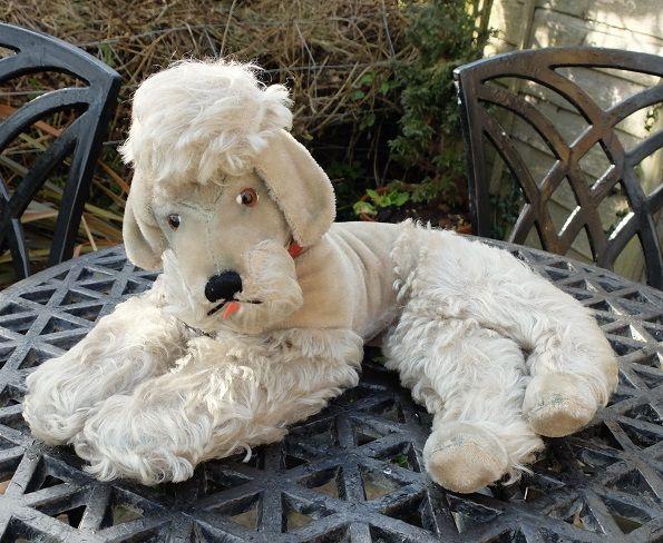 Large Old Steiff Poodle For Sale Www Oldteddybearshop Co Uk Dogs