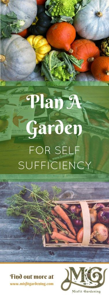 How to plan a garden for self sufficiency. Click to find out how to plan your garden or pin it and save it for later