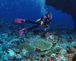Στον αφρό του καταδυτικού τουρισμού η Αλόννησος