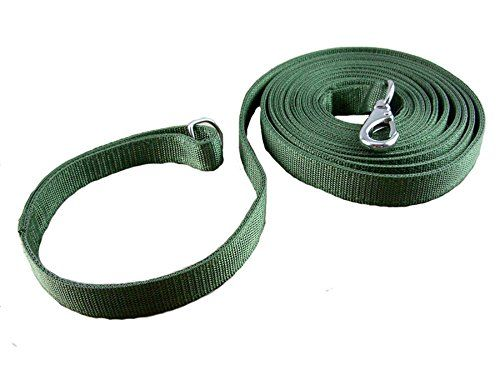 OCSOSO Nylon Pet Lead Durable Classic Dog Cat Leash Green >>> Check this awesome product by going to the link at the image. (This is an affiliate link and I receive a commission for the sales)