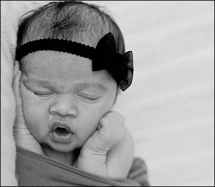 Love the newborns!
