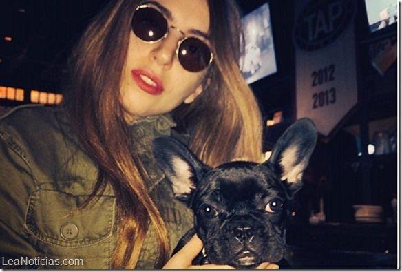 Polémicas fotos de la perra de Lady Gaga desatan controversia (Fotos + Cuidado) - http://www.leanoticias.com/2014/06/27/polemicas-fotos-de-la-perra-de-lady-gaga-desatan-controversia-fotos-cuidado/