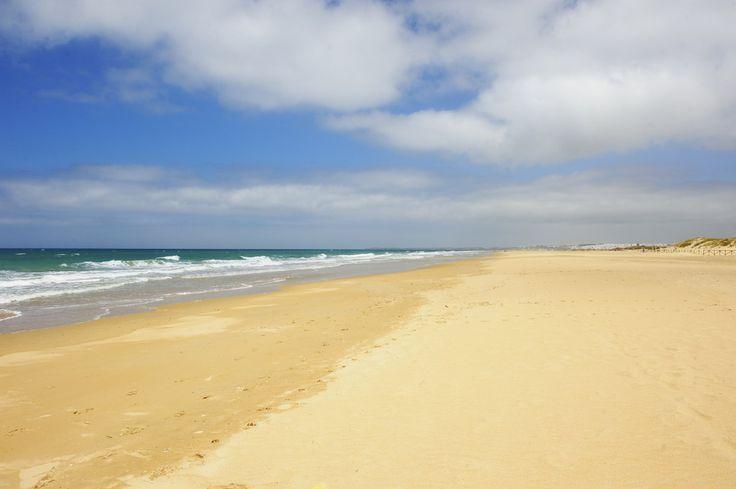 #Playa del Palmar (Vejer de la Frontera)