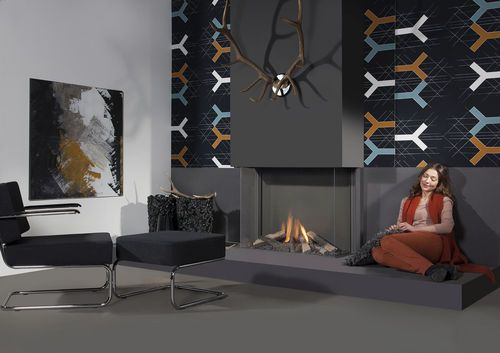 Contemporary 3 sided fireplace (gas closed hearth) Trisore 100H Element4 B.V.