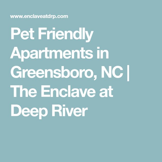Pet Friendly Apartments in Greensboro, NC | The Enclave at Deep River