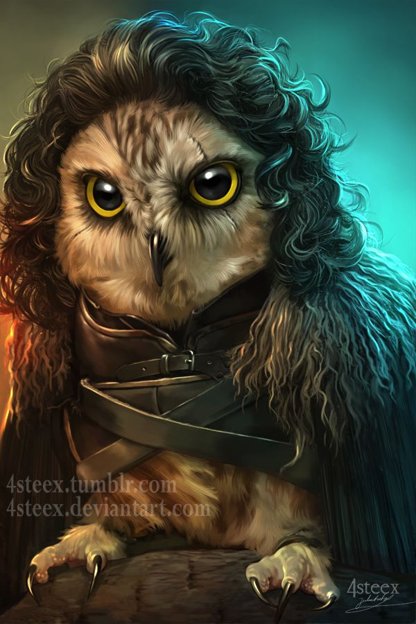 Game of Owls - Jon Snowl by 4steex.deviantart.com on @DeviantArt