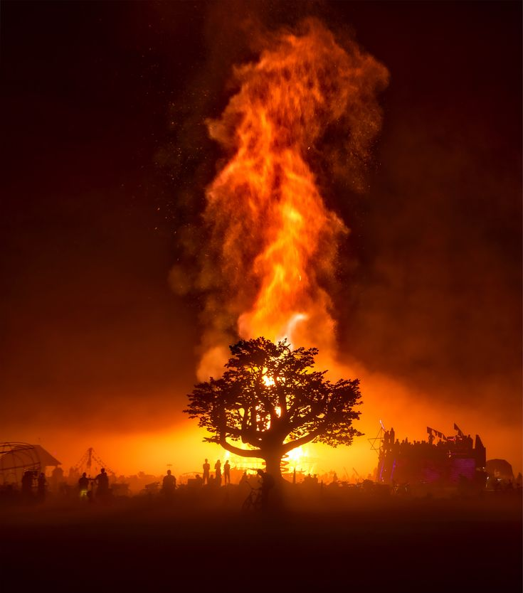 The Best Burning Man Pictures Ideas On Pinterest Burning Man - Fantastic photos of burning man counter culture event taking place in the desert