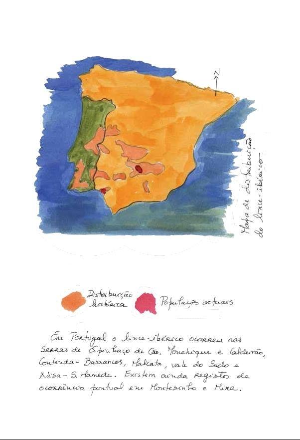 Distribuição do Lince Ibérico em Portugal