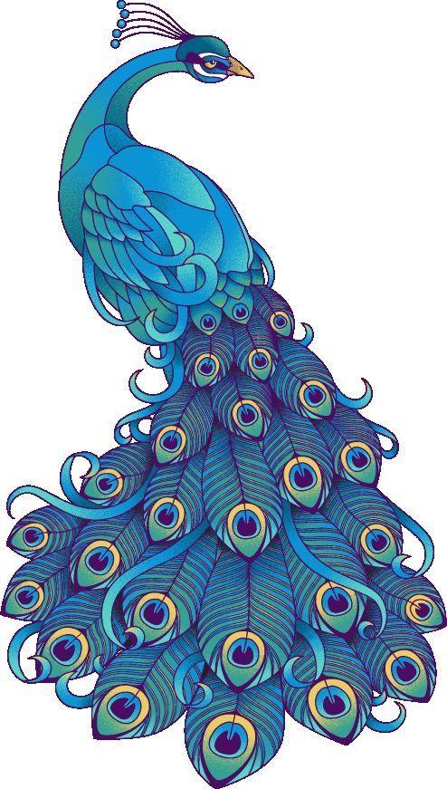 ~ CLIP ART GALORE ~ Peacock
