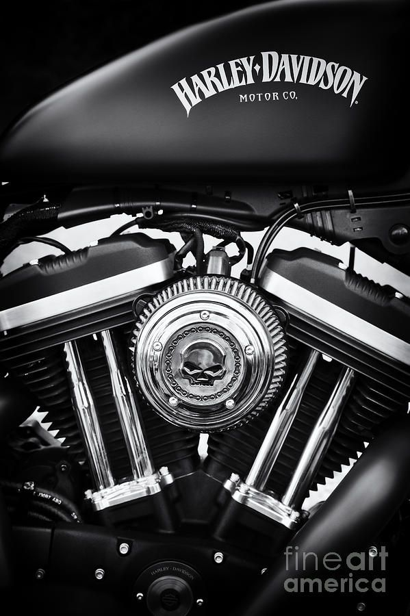 Iron 883 Canvas Print / Canvas Art by Tim Gainey