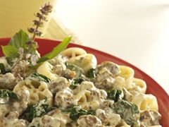 Sausage and Spinach Alfredo.  I'm not sure how I feel about the plant growing in it, but other than that it looks pretty good.