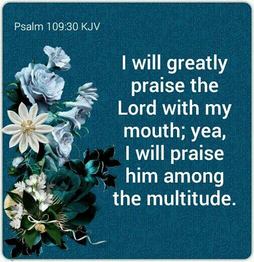 Psalm 109:30 KJV