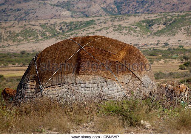 Aqal Soomaali, Somali Hut In The Bush Somaliland - Stock Image