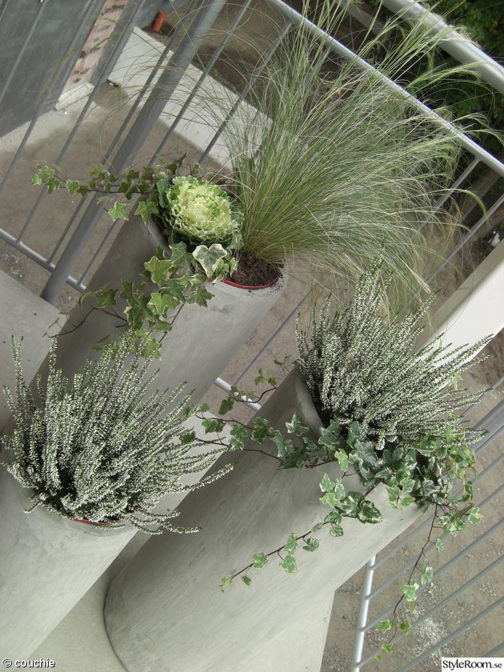 9 best Balkon images by Saasky on Pinterest Balconies, Balcony and - umgestaltung krautergarten dachterrasse