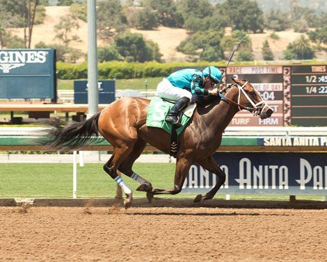With an incredible turn of foot, Rockingham Ranch's Surrender Now opened up to an eight-length victory in the $100,000 Landaluce Stakes at Santa Anita Park July 2, 2017 to become the first stakes winner for her sire Morning Line.