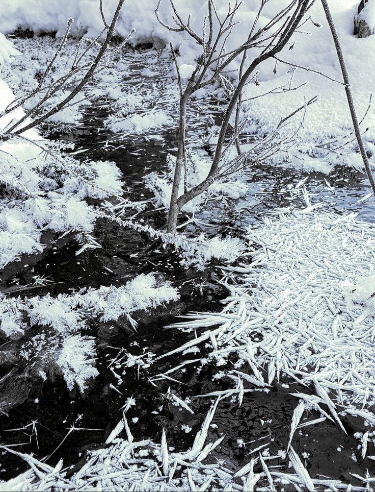 Nature, art, winter