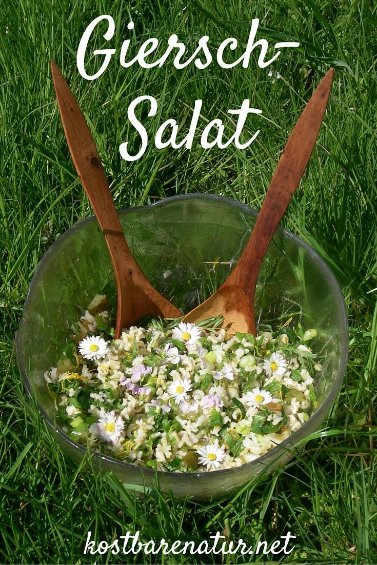 Willst du deinen Freunden Wildkräuter etwas näher bringen? Mit diesem köstlichen Salat zeigst du ihnen die Vorzüge von Giersch, Schafgarbe und vielen mehr!