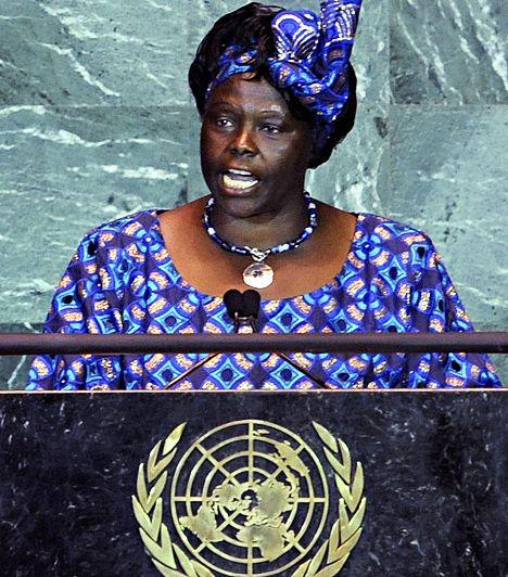 Wangari Maathai Az 1940-ben született Wangari Muta Maathai kenyai környezetvédő és politikus, aki 2003 januárja és 2005 novembere között környezetvédelmi és természeti erőforrás miniszterhelyettesi pozíciót is betöltött. Ő az első afrikai nő, akit - 2004-ben - Nobel Békedíjjal tüntettek ki a fenntartható fejlődéshez, demokráciához és békéhez való hozzájárulása miatt.