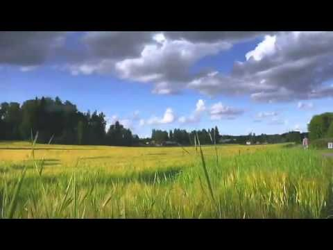 Summer in Finland - YouTube