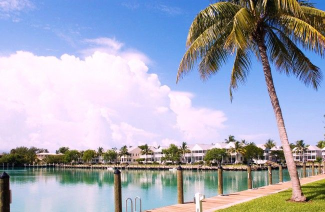 Hawks Cay resort Duck Key #Florida #Keys #USA #Sunshine #State #SunshineState #Tropical #Tropiskt #Vacation #Semester #Travel #Resa #Resmål #Hawks #Cay #Hotell #Hotel #Resort #DuckKey #Duck #Key #Pool #Palm