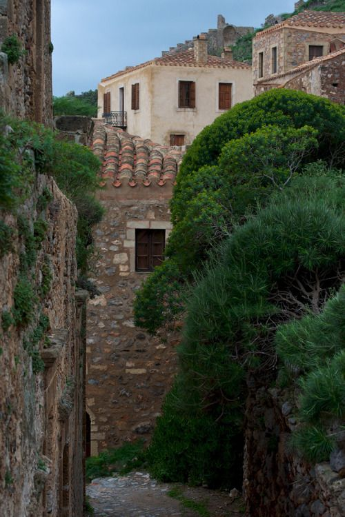 The trees and the stones ~ Monemvasia  by George Koultouridis