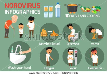 Norovirus (Winter Vomiting Bug): Symptoms and Treatment. Norovirus infographics elements. vector illustration.