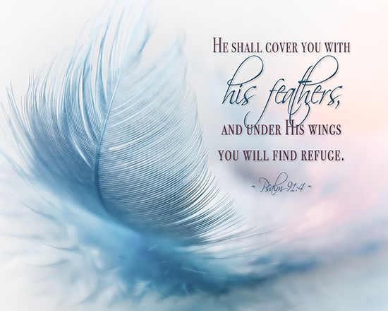 """He shall cover you with His feathers, and under His wings you will find refuge."" Psalm 91:4   This Bible verse is available as 8X10 inch ready to frame wall art. Please click the picture for the link."