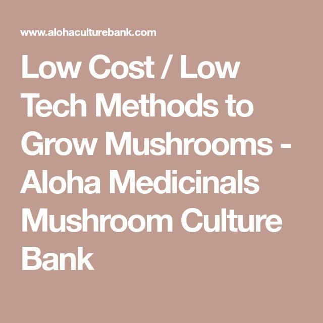 Low Cost / Low Tech Methods to Grow Mushrooms - Aloha Medicinals Mushroom Culture Bank