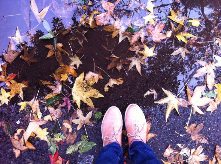 Zapatillas, un día de lluvia, 2013, Concepción, Chile.