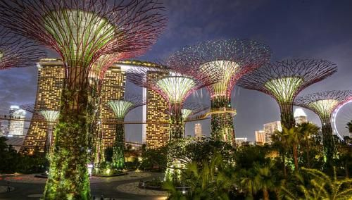 The Supertree Grove in Gardens by the Bay, Singapore. More stories on Singapore tourist sites at http://www.straitstimes.com/visit-singapore Photo: Desmond Wee/The Straits Times #tourism #travel